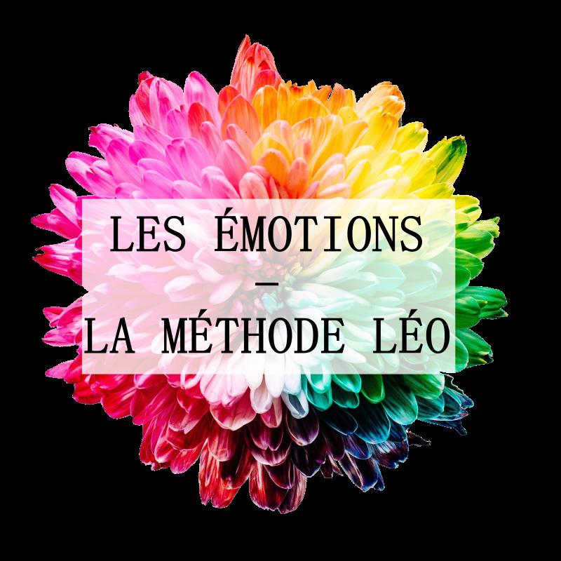 Logo-Formation-émotions-transparent-pt